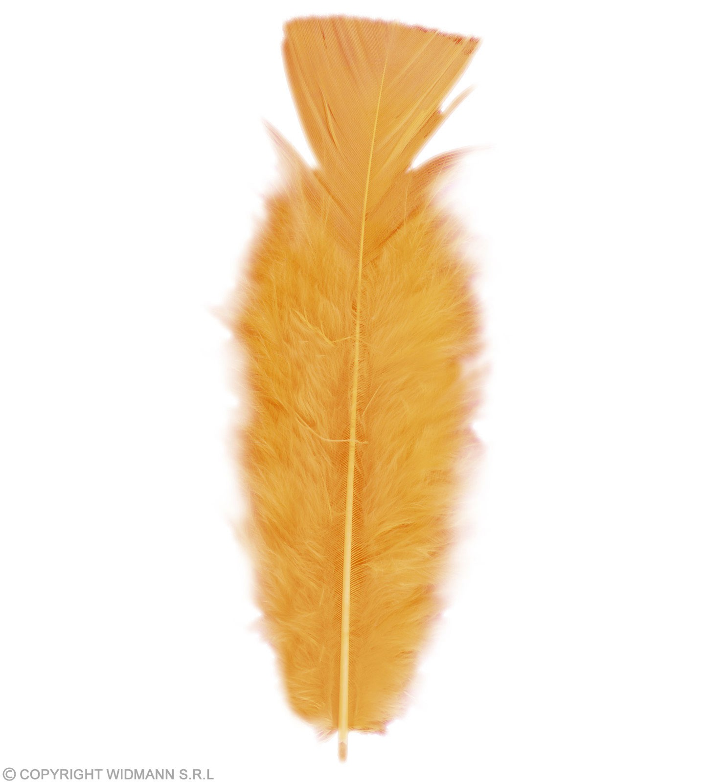Bag Of Feathers Orange - Fancy Dress