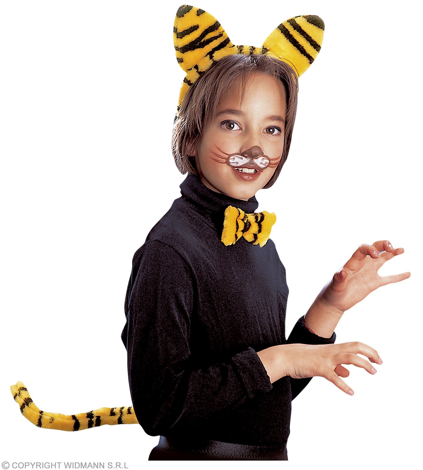 Tiger Dress Up Set - Fancy Dress (Animals)