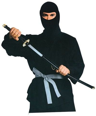 Ninja & Sword Fancy Dress Costume