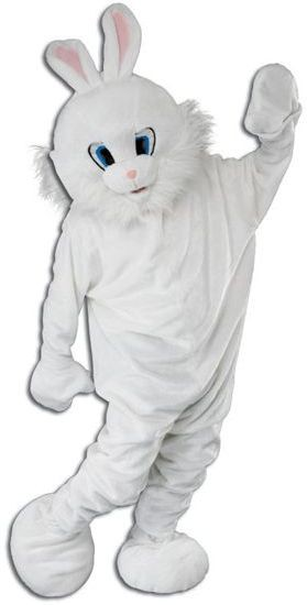 Bunny Mascot Fancy Dress Costume