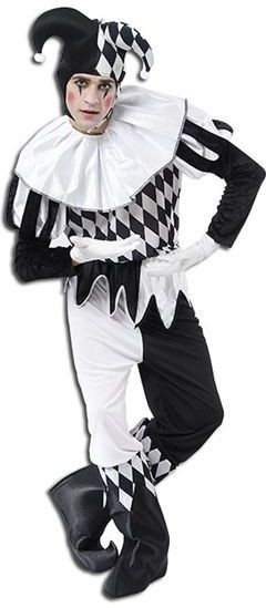 Harlequin Male Fancy Dress Costume