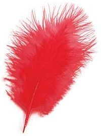 Marabou Red Feathers 12/Pkt (1920S , Burlesque Fancy Dress)