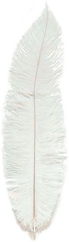 Chick Feathers Cream 10/Pkt (1920S , Burlesque Fancy Dress)