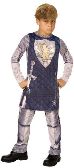 Knight 3D. Fancy Dress Costume