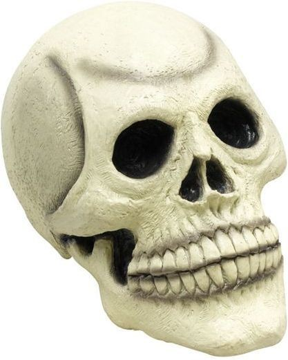 Skull Head Rubber (Large) (Halloween Decorations)