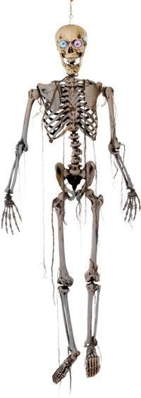 Skeleton 5Ft + Flashing Eyes (Halloween Decorations)