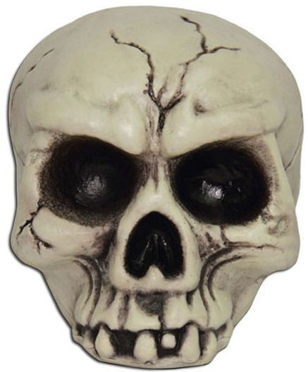 Skull Head. Plastic (Halloween Decorations)
