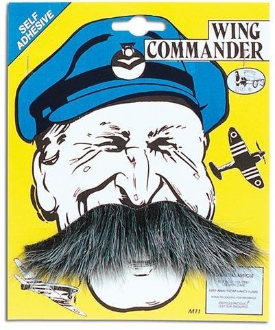Wing Commander Tash (Fancy Dress Facial Hair)