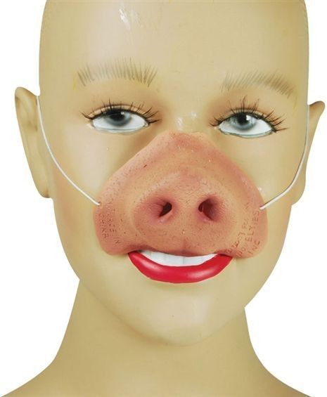 Pig Nose (Animals Fancy Dress Disguises)
