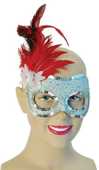 Silver Mask / Red Feather (Fancy Dress Eyemasks)
