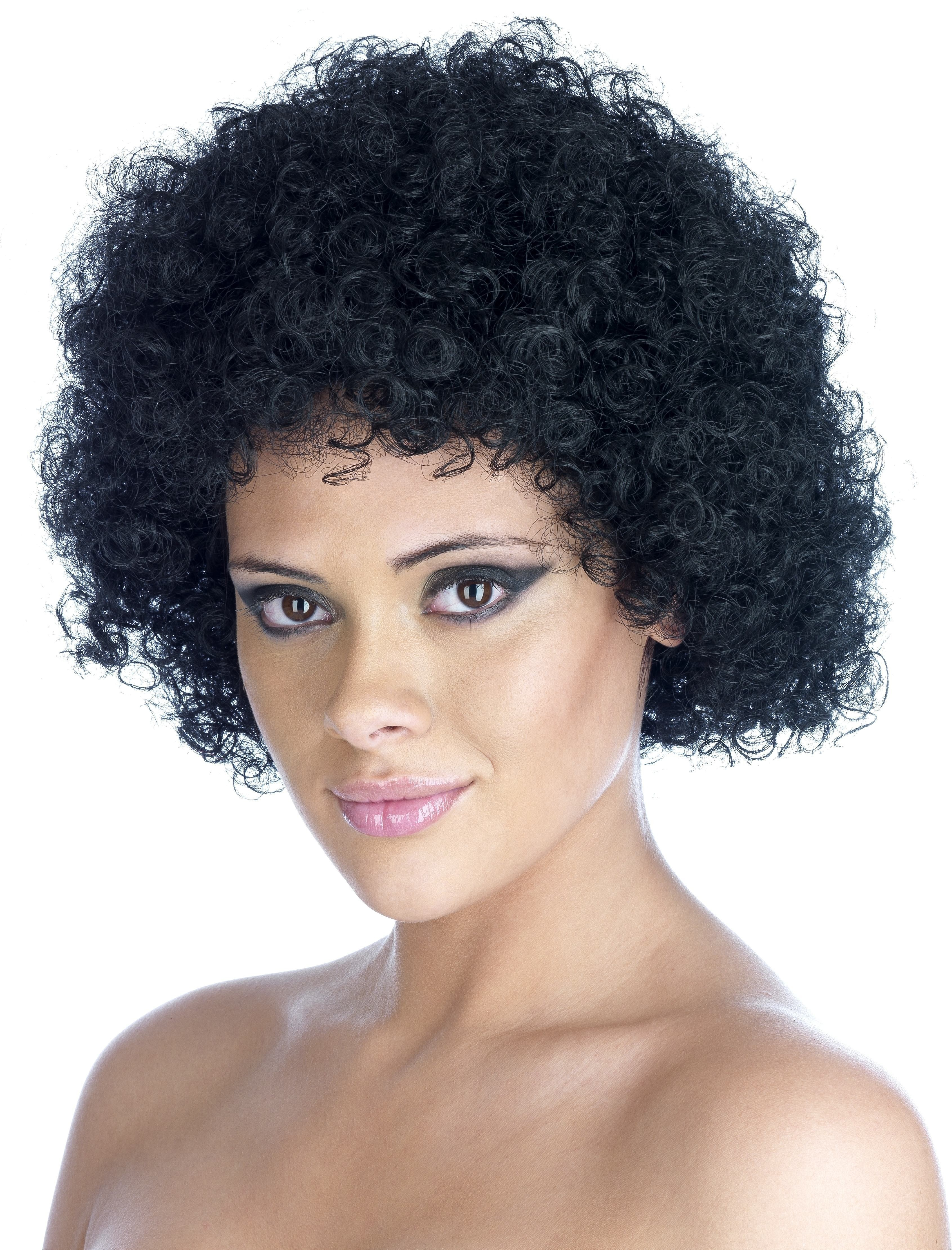 Black  Afro Wig (Pet) (200G) One Size Ladies (1970S)