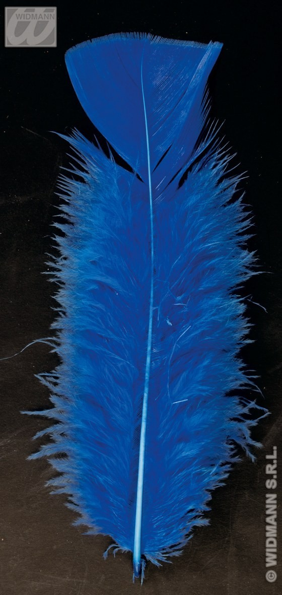 Bag Of Feathers Blue - Fancy Dress