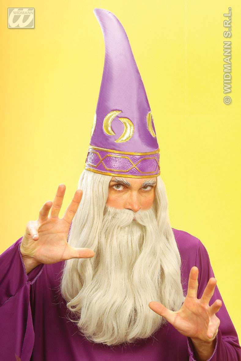 Wizard Set Hat W/Hair And Beard - Fancy Dress (Animals)