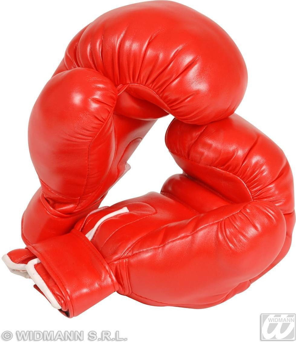 Boxing Gloves Prof Adult Size - Fancy Dress Mens