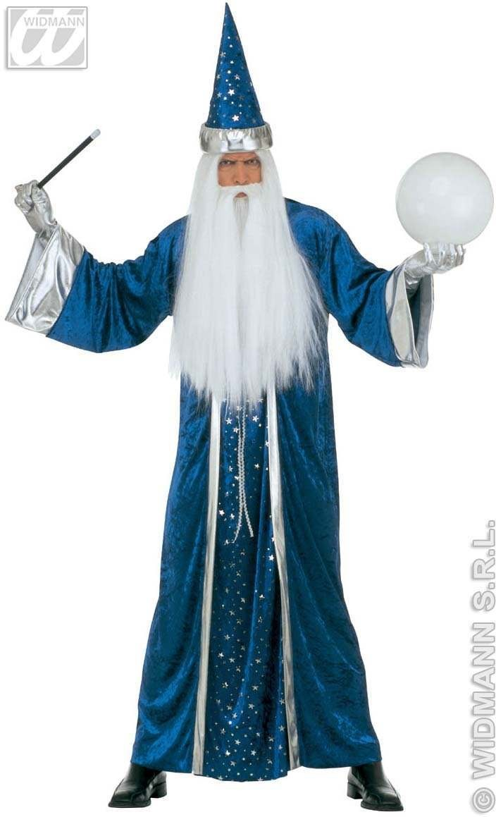 Fantasy Wizard Adult Fancy Dress Costume Mens (Halloween)