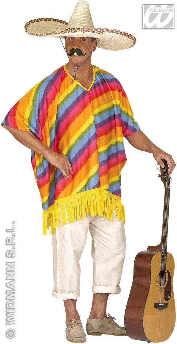 Multicolour Poncho Adult Fancy Dress Costume Mens (Cultures)