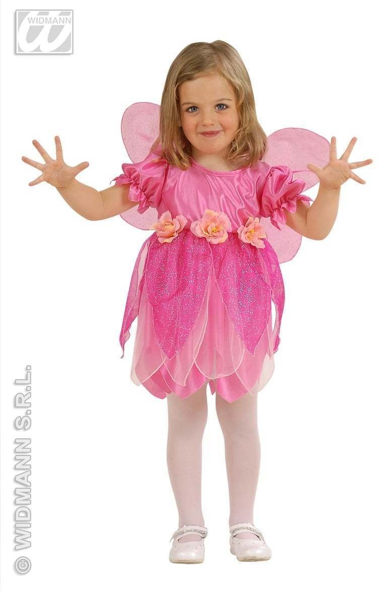 Lil Rose Fairy Child Costume 2-3 Fancy Dress Costume (Fairy Tales)