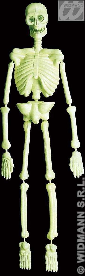 3D Gid Lab Skeletons 92Cm - Fancy Dress (Halloween)