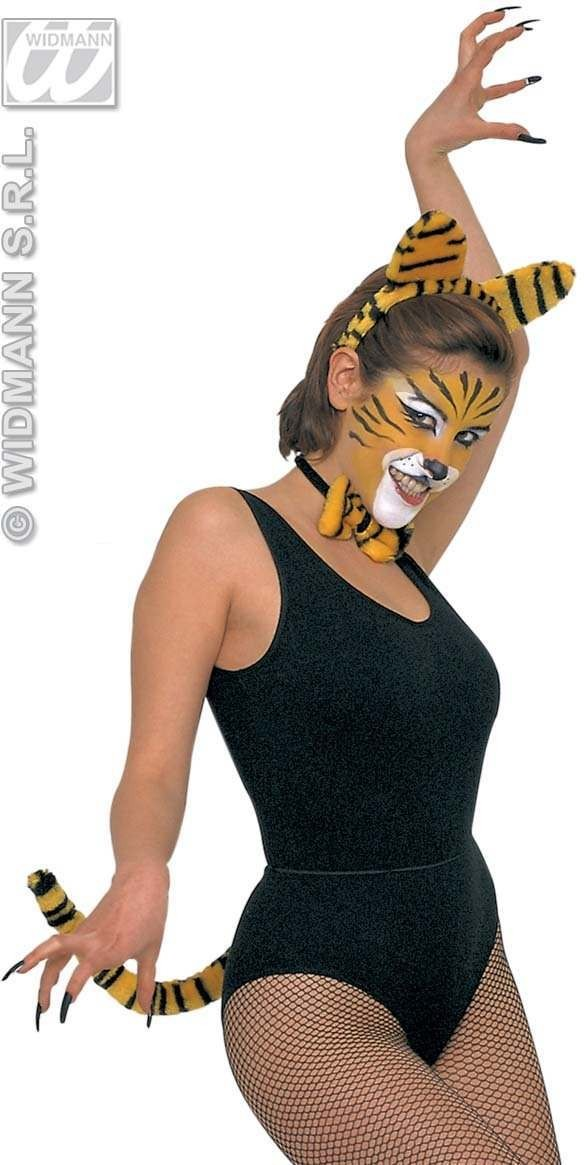 Dress Up Set Tiger - Fancy Dress (Animals)