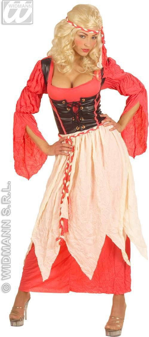 Medieval Maid Adult Fancy Dress Costume Ladies (Medieval)
