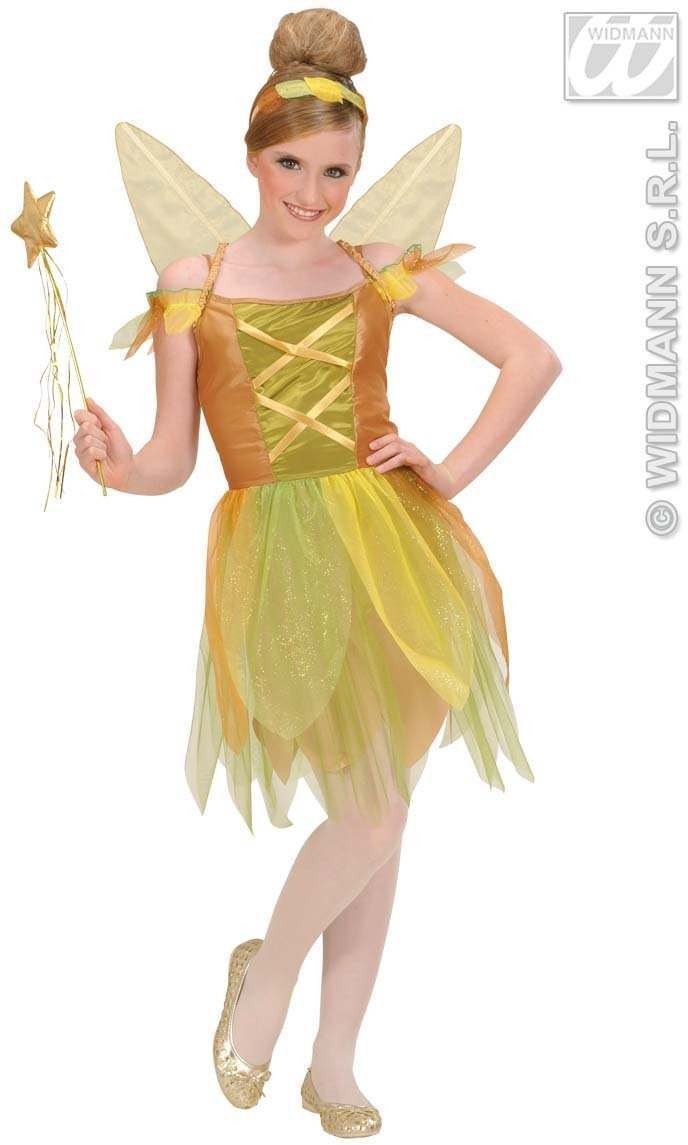 Golden Forest Pixie Child Fancy Dress Costume (Fairy Tales)