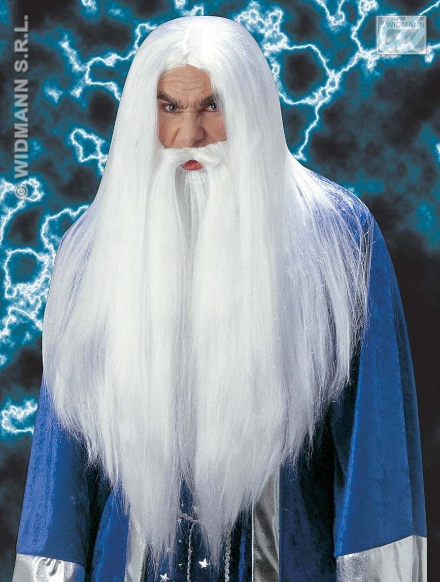 Wizard Wig W/Beard Moustache - Fancy Dress