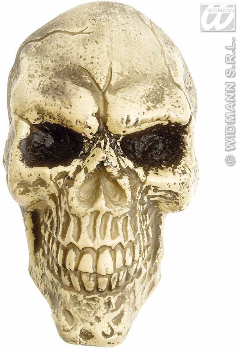 Wall Skulls 25Cm - Fancy Dress (Halloween)