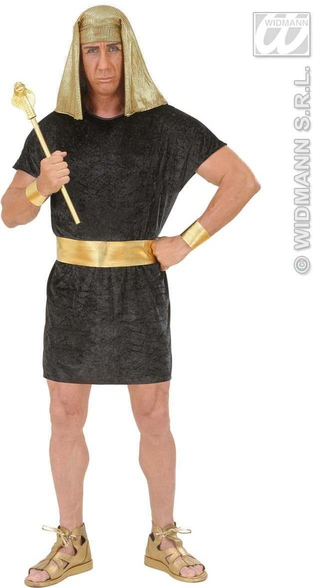 Pharaoh Adult Fancy Dress Costume Mens (Egyptian)