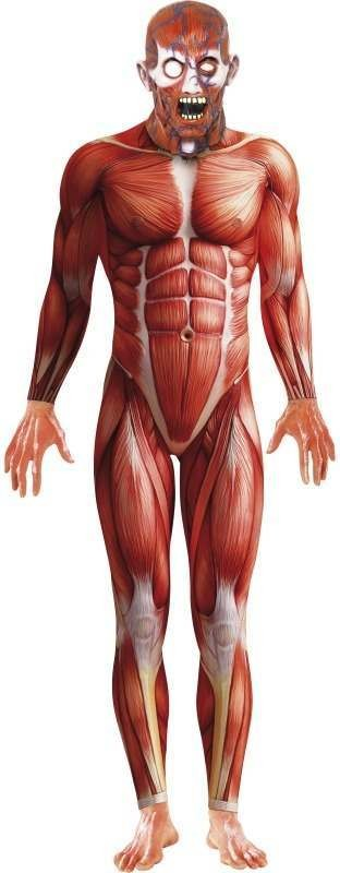 Anatomy Man Fancy Dress Costume