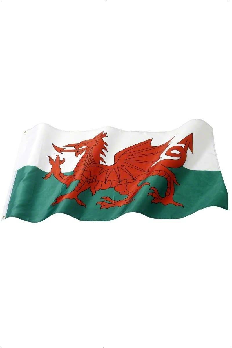 Welsh National Flag - Fancy Dress