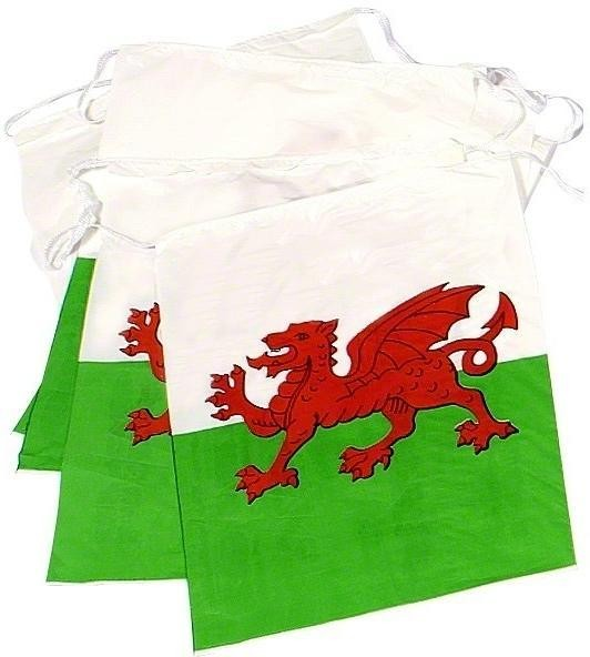 Welsh National Flag Bunting - Fancy Dress