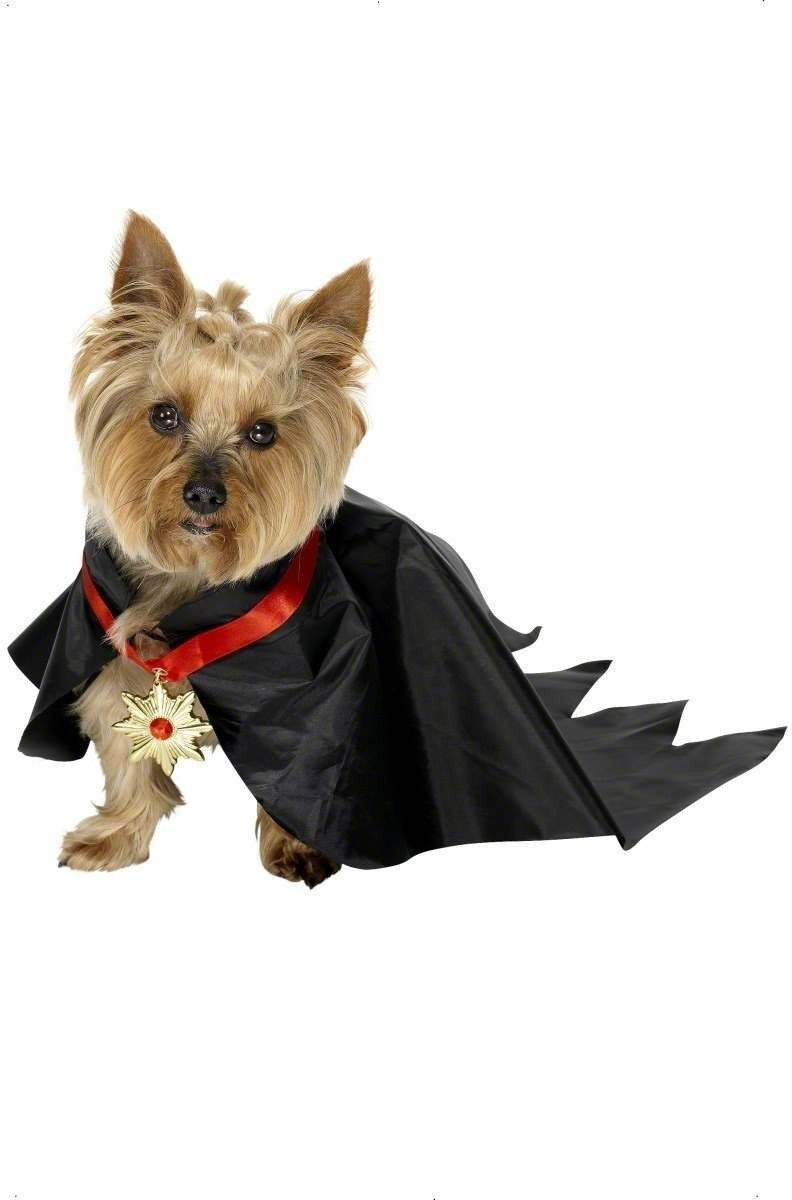 Pet Dog Devil Fancy Dress Costume (Halloween)