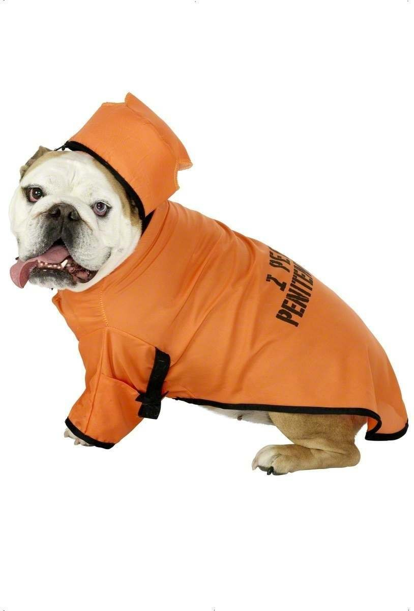 Convict Pet Fancy Dress Costume (Cops/Robbers)