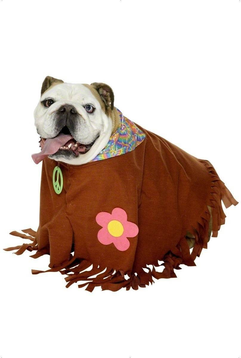 Hippie Pet Fancy Dress Costume (1960S)