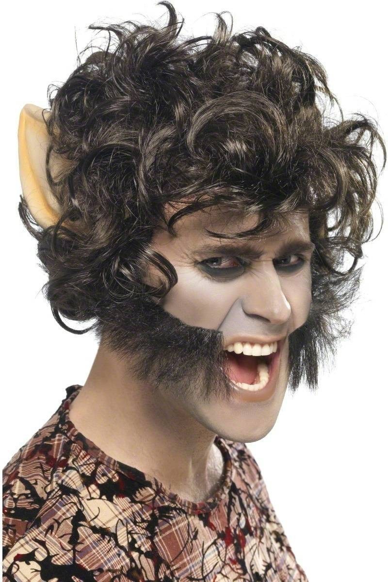 Werewolf Wig Fancy Dress Mens (Halloween) - Brown