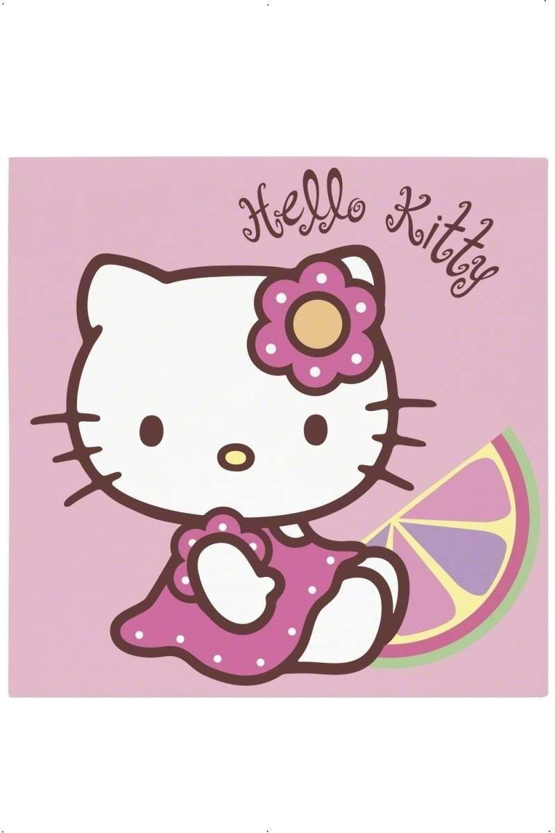 Hello Kitty Bamboo Party Napkins Fancy Dress