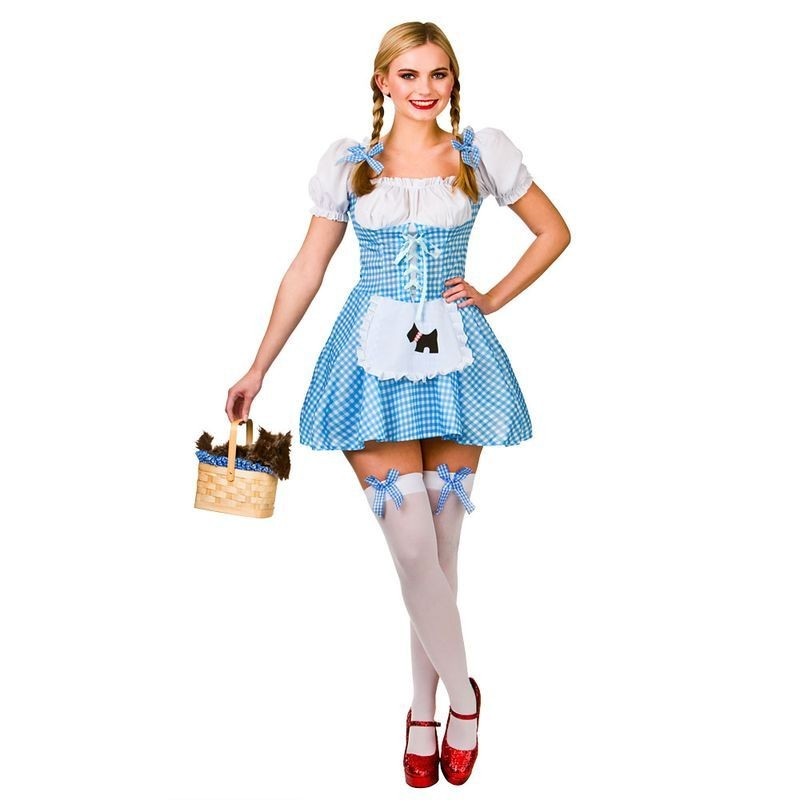 Ladies Blue And White Fairy Tale Dorothy Fancy Dress Costume