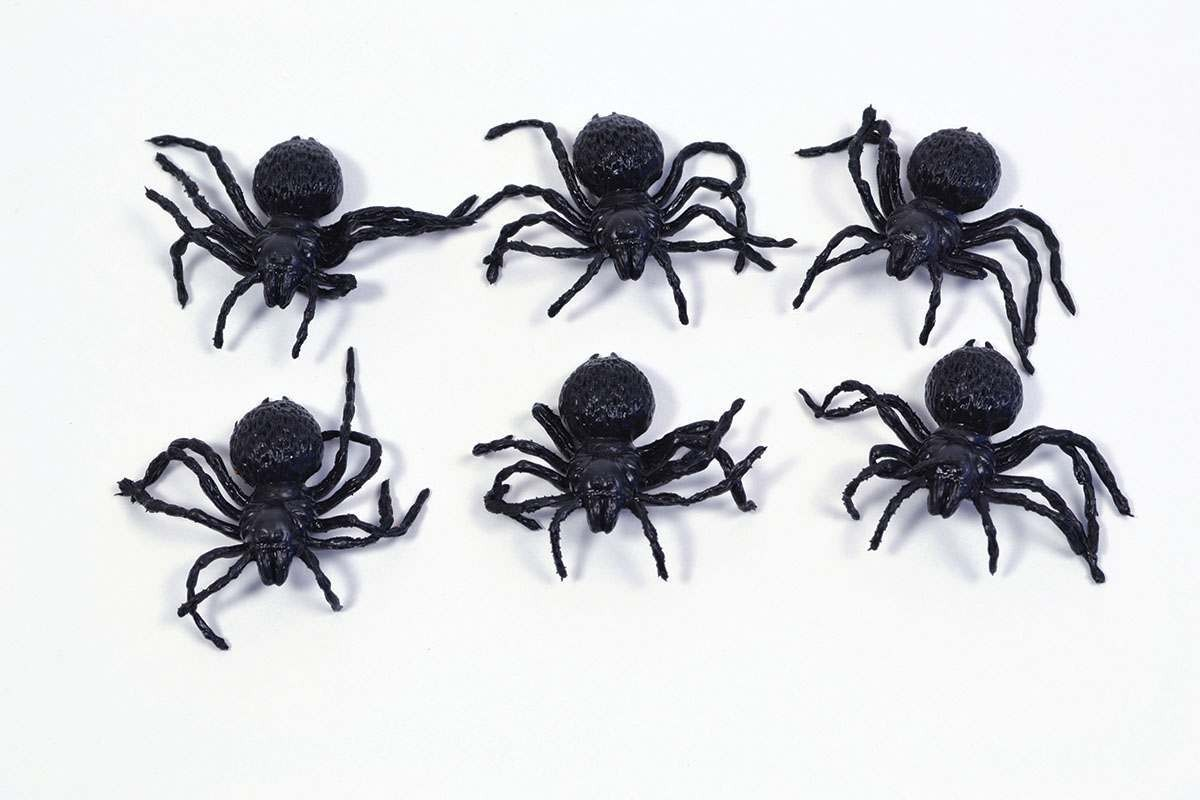 Spiders Small (6Pcs) Accessories