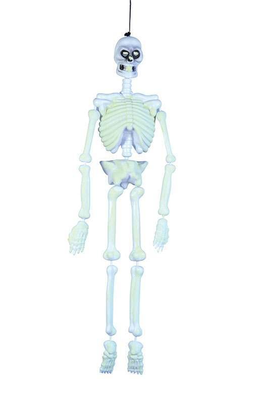 Skeleton 3Ft Glow In Dark/Blow Moulded Accessories