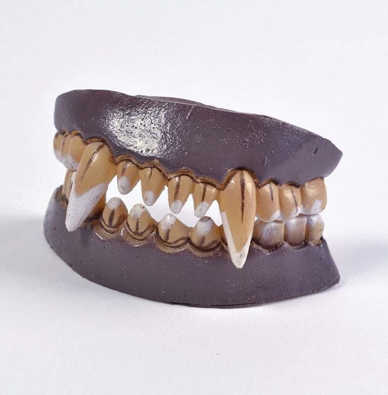 Werewolf Character Teeth (Full Set) Accessories