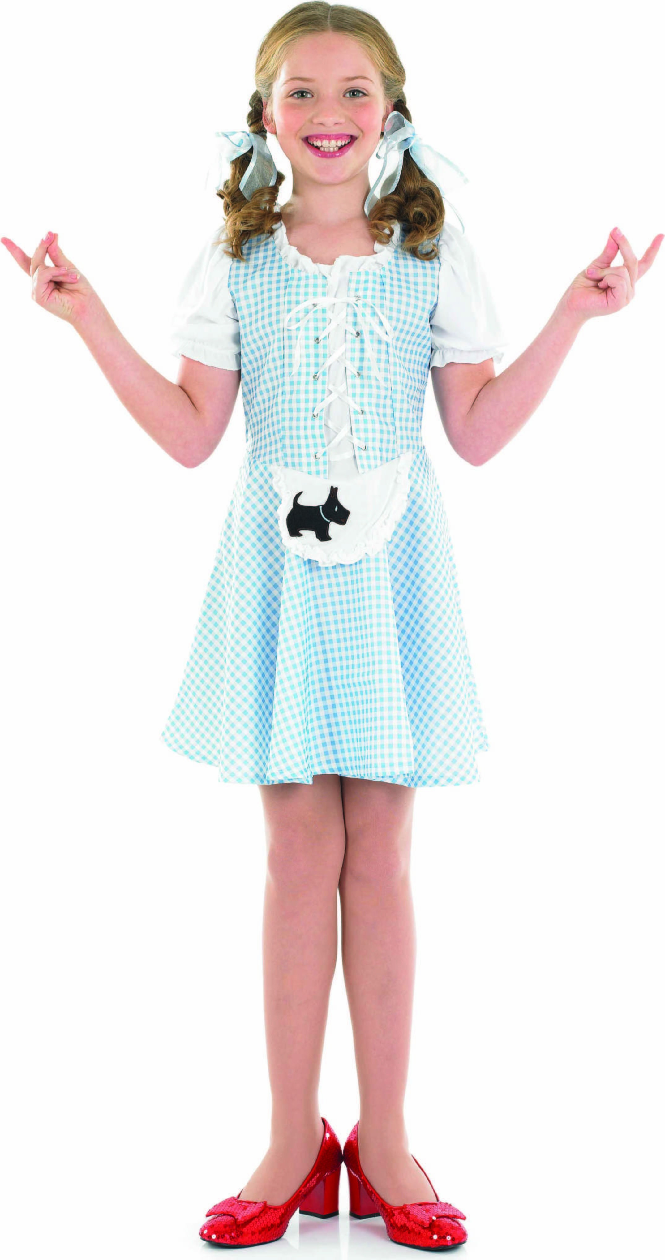 Dorothy Girl Fancy Dress Costume