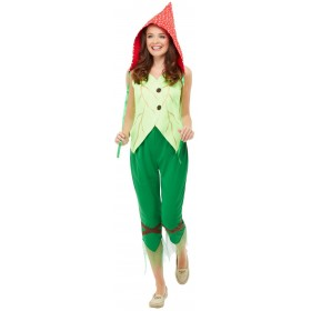 Toadstool Pixie Fancy Dress Costume Fairy Tales