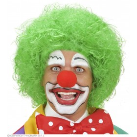 Clown Wig - Green - Fancy Dress (Clowns)