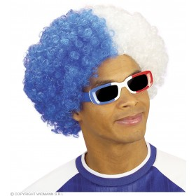Curly Sport Wig Blue/White - Fancy Dress