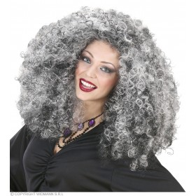 Witch Wig In Polybag - Fancy Dress (Halloween)