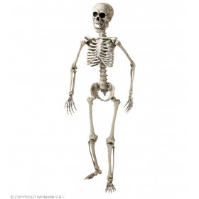 Posable Skeleton - 160Cm - Fancy Dress (Halloween)