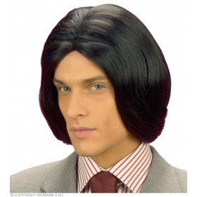 Amadeus Wig Black - Fancy Dress