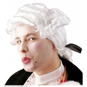 Casanova Wig In Box - Fancy Dress