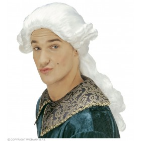 Duke Donatien Wig Boxed - Fancy Dress