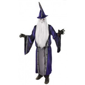 Wizard /Robe Fancy Dress Costume